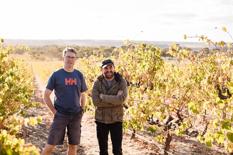 McLaren Vale's Hither & Yon becomes SA's first carbon-neutral winery